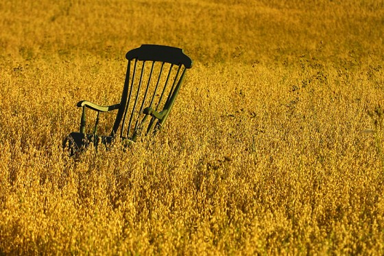 rocking-chair-in-field