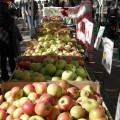 Weekend street market, Ritten House Square Philadelphia