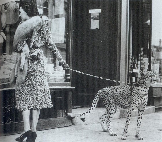 phyllis-gordon-walking-her-cheetah